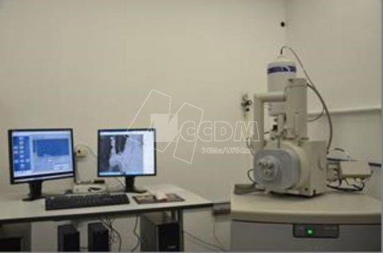 microscopia_eletronica_de_varredura_mev_morfologia_e_tamanho_de_particulas_03